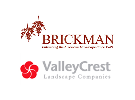 brickman landscape maintenance