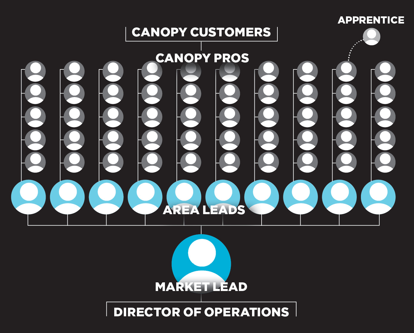Canopy_Structure