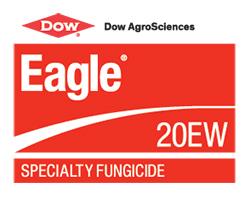 Dow Eagle
